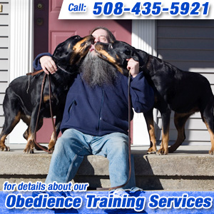 Obedience Training Metrowest, MA