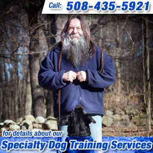 Specialty Dog Training Metrowest